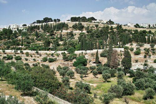 иерусалимские горы